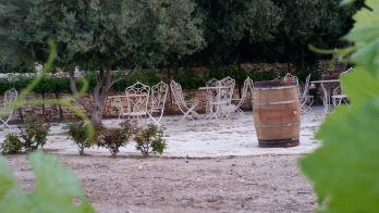 יקב מרשה – Maresha Estate Winery
