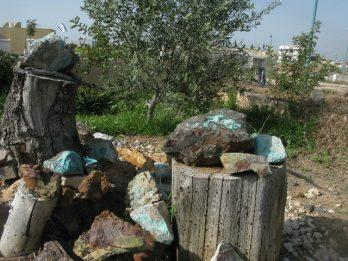 מסע משפחתי לבטן האדמה – קיבוץ בית-ניר,  דר' אריה איתמר